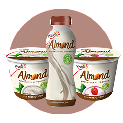 Yoplait Almond